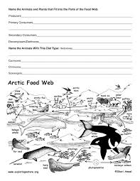 arctic tundra food web activity d u0027aularies book of norse myths