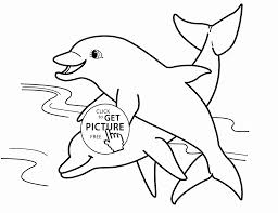 two dolphins animal coloring page for kids sea animal coloring