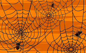 spooky spider webs u2013 exceptional cleaning