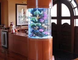 creative aquarium room divider design 608x467 custom aquariums