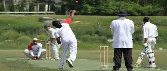 hungarian cricket association holds corporate day the