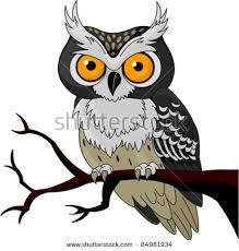 owl on branch stock images royalty free images vectors