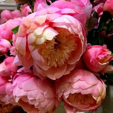 Faux Peonies Happy Valentines And Beyond From Homesense U2014 Life At 139a