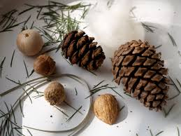 handmade ornaments pincone gnome the magic onions