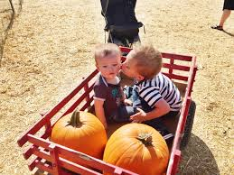 Pumpkin Patch Moorpark by Pumpkin Patch The Mitchell Adventures