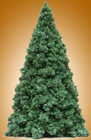 commercial trees connie s holiday attractions our northwest conifer oregon cascade fir and rocky mountain pine trees