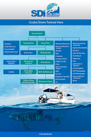 sdi or padi things to consider about scuba diving training agencies
