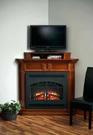 lovely gas fireplace inserts suzannawinter com