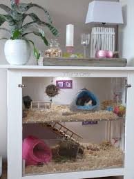 Diy Indoor Rabbit Hutch 204 Best Guinea Pig Toys Images On Pinterest Guinea Pigs Guinea