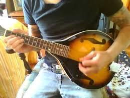 rose tattoo dropkick murphys mandolin cover youtube