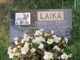 headstones for dogs the resting places of 7 dogs atlas obscura