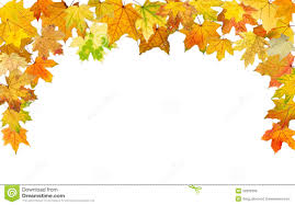 thanksgiving leaves clipart autumn border stock photos image 32900393