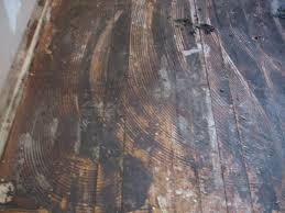 romancing the floor saving and restoring hardwood home