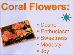Flowers Colors Meanings - colors of flowers and their meaning