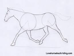 drawing horses made simple