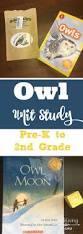 best 20 owls kindergarten ideas on pinterest owl preschool owl