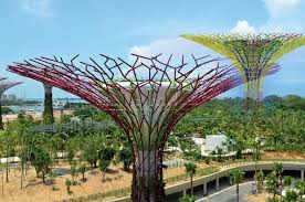trees of steel evolution