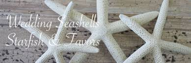 starfish decorations wedding shells coastal wedding decor california seashell co