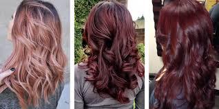 rose gold l shade most popular red hair color shades matrix