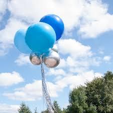 helium balloon delivery nyc balloons bubblegum balloons silver balloons blue balloons