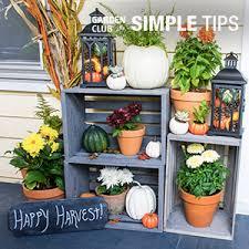 Home Depot Flower Projects - flower gardening garden club