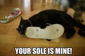 Mine Meme - your sole is mine mortalkombat reference funny humor cute cat