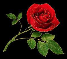 imagenes bonitas que brillen imagenes de flores que brillan y se mueven flores que brillen y