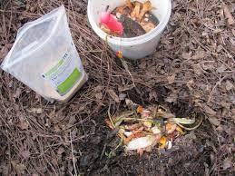 ten water saving tips for your garden the micro gardener