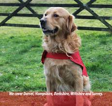 woofability training assistance dogs for disabled people and