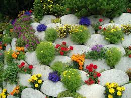 Garden Flowers Ideas Summer Flower Garden Ideas Torneififa