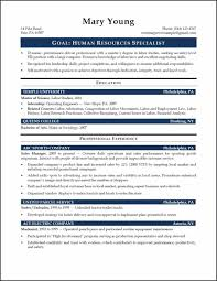 Resume Format Download Best by U Write The Download Best Resume Company Resume Format U Write The