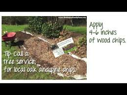save water in your vegetable garden youtube