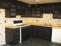magnificent painting kitchen cabinets black designs u2013 kitchen