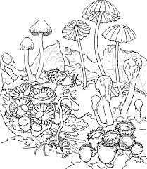 mushroom psychedelic coloring pages coloringstar
