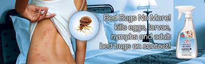 What Kills Bed Bug Eggs Bed Bugs No More Bed Bug Pesticide Bugband Deet Free Insect