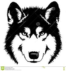black and white paint draw wolf illustration stock illustration