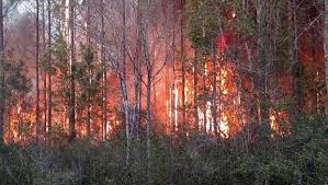 Fl Wildfire Map by Uncertainty Looms Over Families Forced To Flee From Bryceville