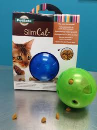 the slim cat ball by petsafe food puzzles for cats