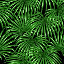 tropical wrapping paper seamless pattern with palms leaves decorative image tropical leaf