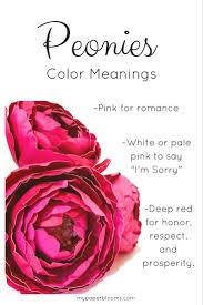 Meaning Of Pink Roses Flowers - 25 best peony flower meaning ideas on pinterest peony meaning