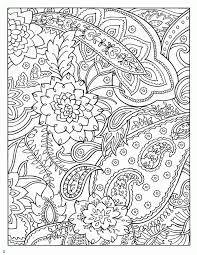dover coloring book paisley designs paisley designs coloring