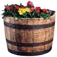 whiskey barrel planter garden pinterest whiskey barrel