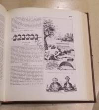 le grand dictionnaire de cuisine gastronomie alexandre dumas le grand dictionnaire de cuisine