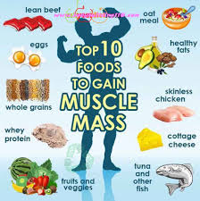 top 10 foods to gain muscle mass gym pinterest