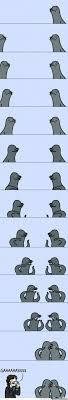 Meme Foca Gay - gay seal is gay by pent meme center