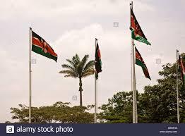Kenya Africa Flag Kenyan Flag Nairobi Kenya Africa Stock Photo Royalty Free Image