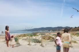 native plants los angeles here u0027s what santa monica beach will look like after it u0027s