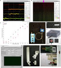 frontiers real time in vivo optogenetic neuromodulation and