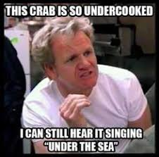 Men Cooking Meme - oh gordon ramsey memes gordon ramsey hell no pinterest