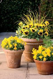 best planters decoration plants for autumn planters planter box centerpiece best
